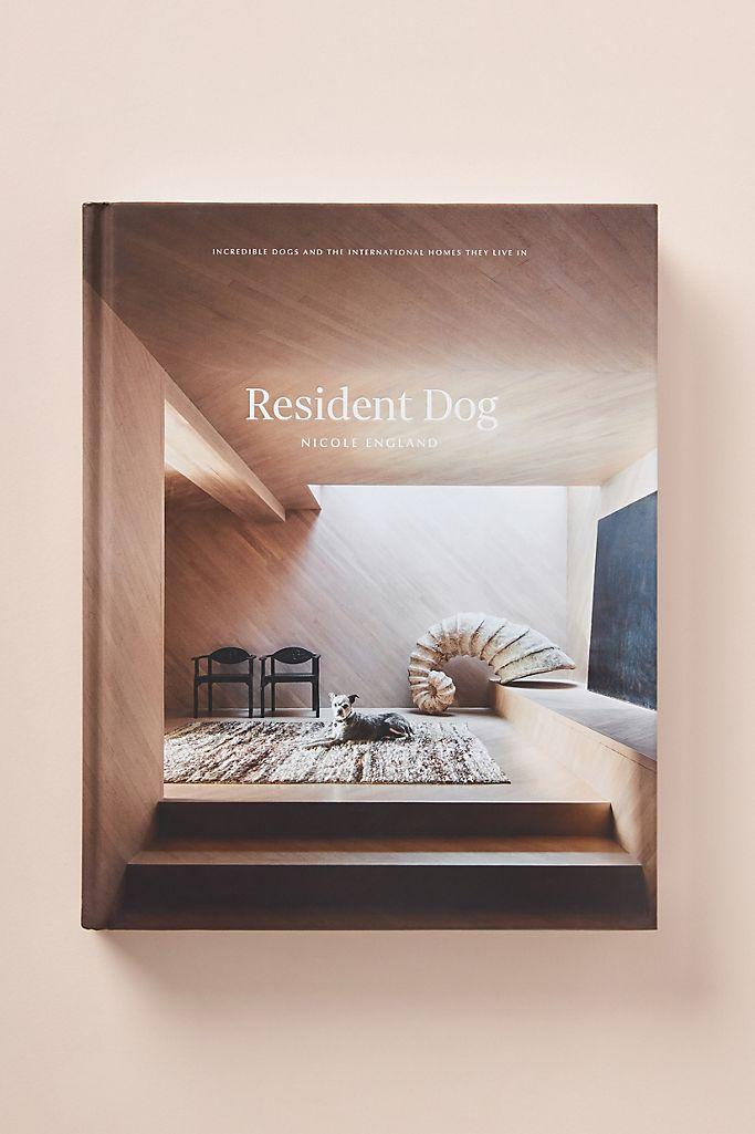 Resident Dog $50.00
