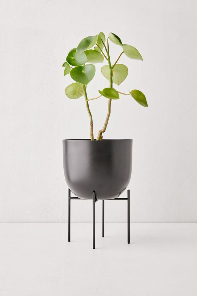 Ava Metal Planter And Stand $24.00