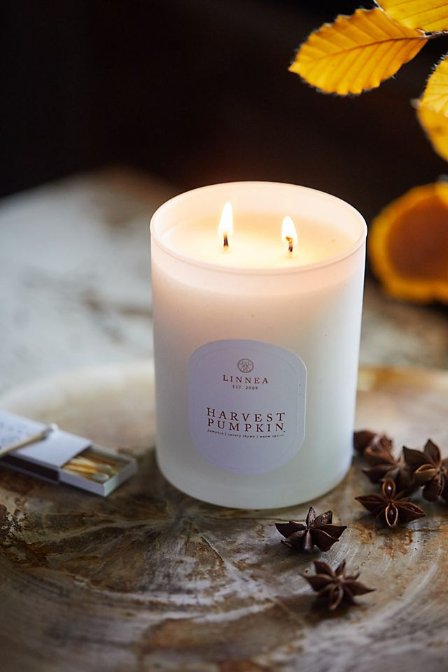 Linnea Candle, Harvest Pumpkin $38.00